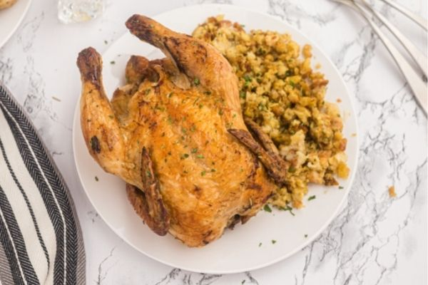 Golden small hen served on a white plate with stuffing.